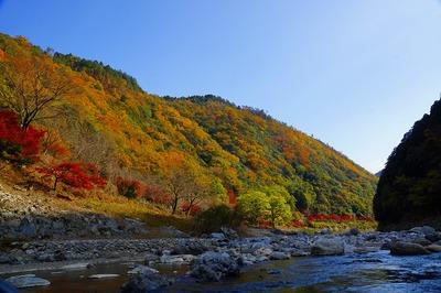 保津川と紅葉